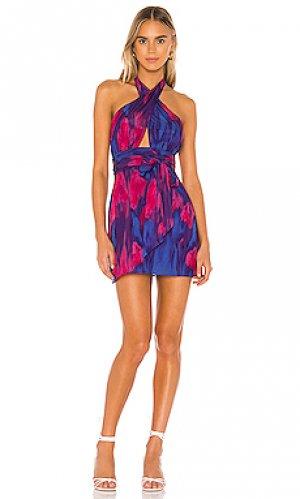 Мини платье hepburn MAJORELLE. Цвет: фиолетовый