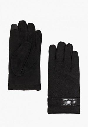 Перчатки Zolla MM96008. Цвет: черный