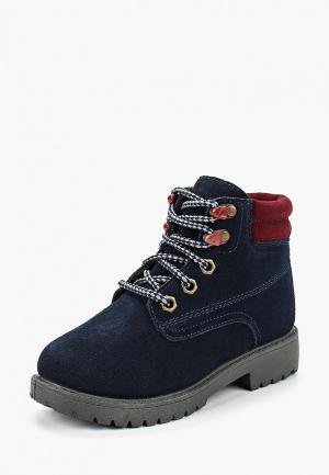 Ботинки Alessio Nesca. Цвет: синий