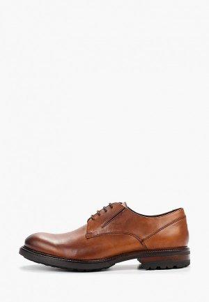 Туфли Baltarini. Цвет: коричневый