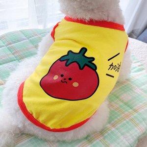 Майка для домашних животных с принтом томата SHEIN. Цвет: многоцветный