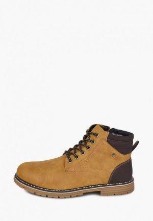 Ботинки T.Taccardi. Цвет: коричневый