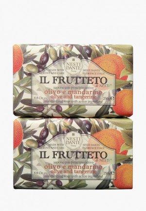 Набор для ухода за телом Nesti Dante Pure olive & Tangerine / Оливковое масло и мандарин, 2*250 г. Цвет: разноцветный