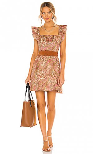 Платье brighton Zimmermann. Цвет: brown,pink