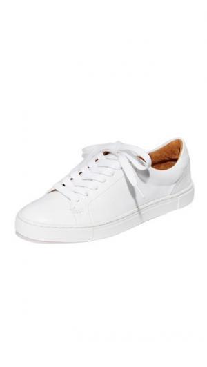Ivy Low Lace Sneakers Frye