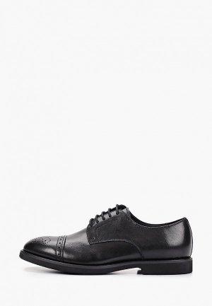 Туфли Massimo Renne. Цвет: черный