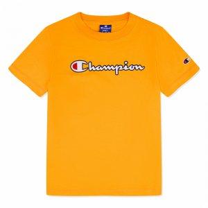 Crewneck T-Shirt Champion. Цвет: желтый