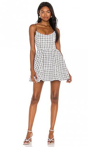 Платье venice Lovers + Friends. Цвет: черный,белый