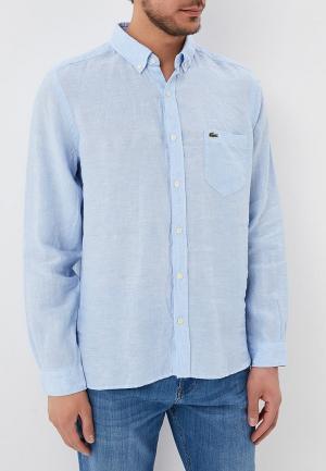 Рубашка Lacoste LA038EMAJRL9. Цвет: голубой