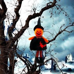 1шт Кулон с декором тыквы на Хэллоуин SHEIN. Цвет: многоцветный