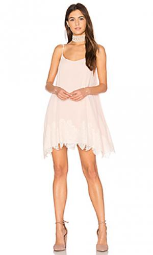 Кружевное мини-платье lockett Show Me Your Mumu. Цвет: румянец