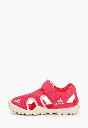 Сандалии adidas CAPTAIN TOEY K. Цвет: розовый