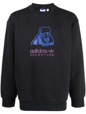 Adventure Bear logo sweatshirt adidas. Цвет: черный