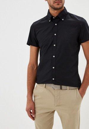 Рубашка Alcott. Цвет: черный