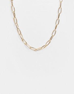 Золотистое ожерелье-цепочка -Золотистый Accessorize