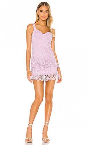 Платье raelynn Lovers + Friends. Цвет: бледно-лиловый