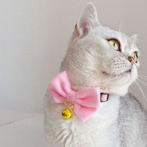 Кошачий воротник с бантом 1шт SHEIN. Цвет: розовые