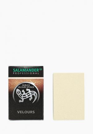 Губка для обуви Salamander Professional. Цвет: прозрачный