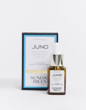 Juno с антиоксидантами + Масло для лица Superfood 15 мл-Очистить Sunday Riley