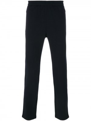 Спортивные брюки TECHMERINO™ Z Zegna. Цвет: синий