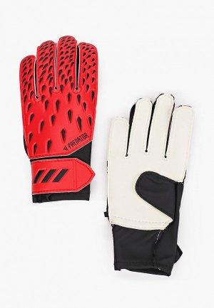 Перчатки вратарские adidas. Цвет: красный