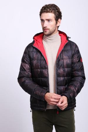 Куртка Gaudi Jeans. Цвет: коричневый