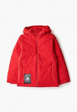 Пуховик adidas YB J DOWN JKT. Цвет: красный