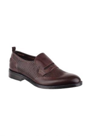 Туфли Barracuda. Цвет: коричневый
