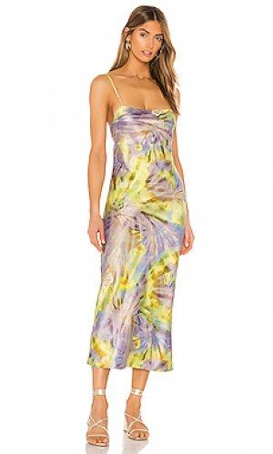 Платье миди jackie FLYNN SKYE. Цвет: желтый