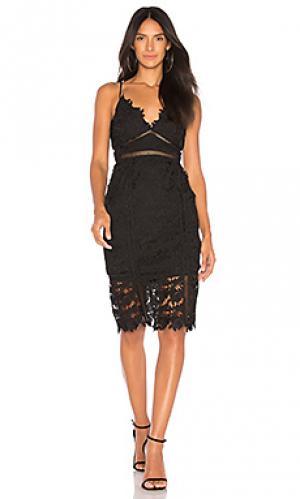 Мини платье botanica Bardot. Цвет: черный