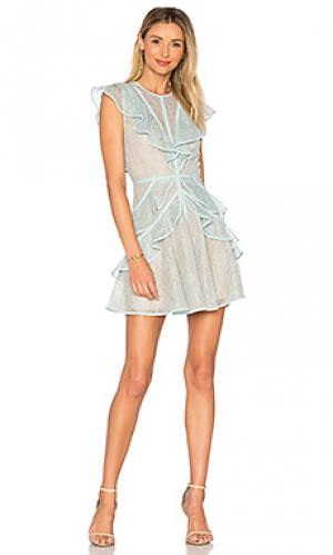 Платье kimbriella BCBGMAXAZRIA. Цвет: синий
