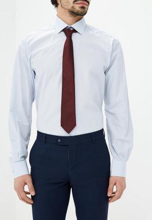 Рубашка Paspartu. Цвет: голубой