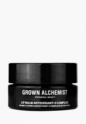 Бальзам для губ Grown Alchemist Антиоксидант +3 15 мл. Цвет: черный
