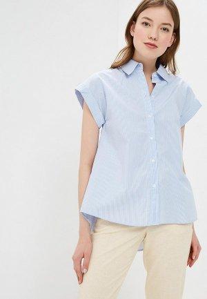 Рубашка Baon. Цвет: голубой