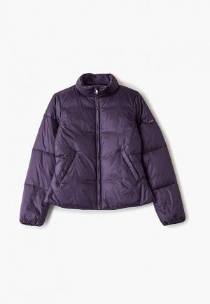 Куртка утепленная Emporio Armani. Цвет: фиолетовый