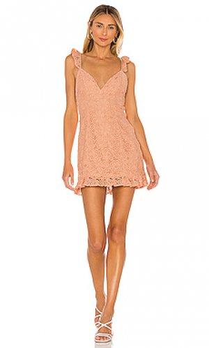 Платье sunny daze MAJORELLE. Цвет: peach