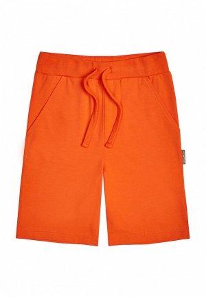 Шорты Kogankids. Цвет: оранжевый