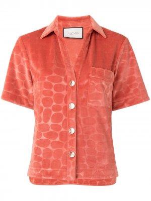 Рубашка Cailey с принтом Alexis. Цвет: розовый