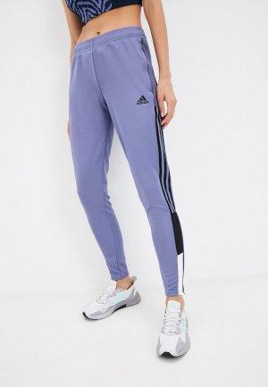 Брюки спортивные adidas TIRO TKPNT BL W. Цвет: фиолетовый