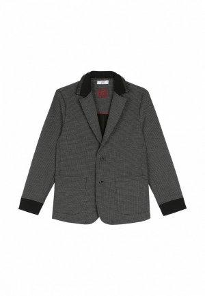 Пиджак Bell Bimbo. Цвет: серый