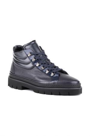 Ботинки Gianfranco Butteri. Цвет: синий