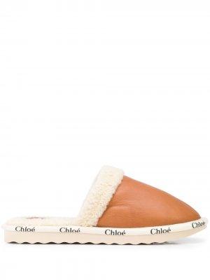 Слиперы с логотипом Chloé. Цвет: коричневый