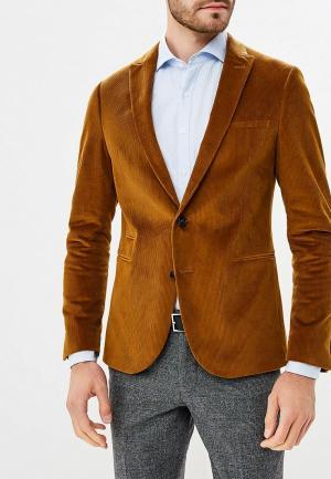 Пиджак Drykorn. Цвет: коричневый