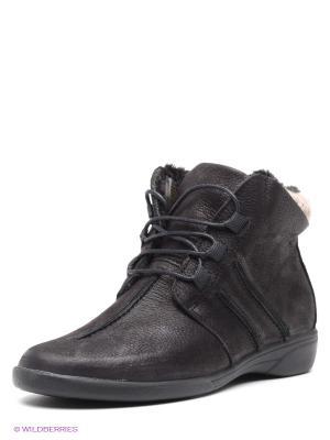 Ботинки Comodo. Цвет: черный