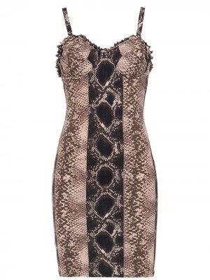 Printed shift dress Amir Slama. Цвет: черный