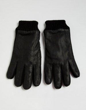 Перчатки из кожи и трикотажа -Черный French Connection