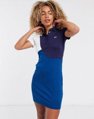 Синее платье мини в стиле поло -Мульти Lacoste