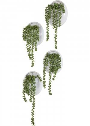 Растение искусственное bonprix. Цвет: зеленый