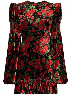 Vampires Wife бархатное платье мини Carline Rose с принтом The Vampire's. Цвет: черный
