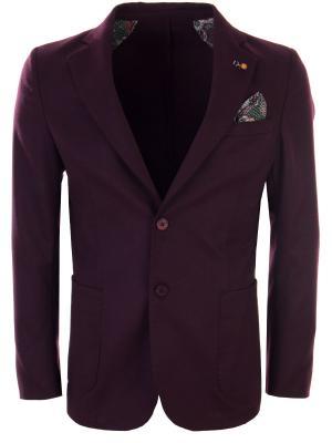 Шерстяной пиджак с платком-паше ROBERTO P